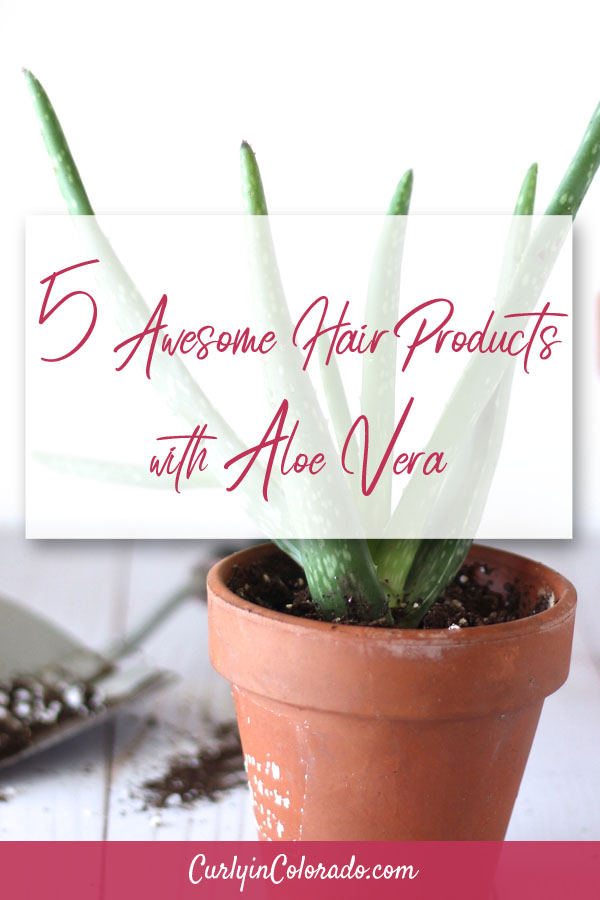 potted aloe vera with text overlay